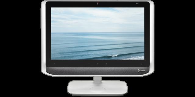 Poly Studio P21 USB All-In-One Monitor EU